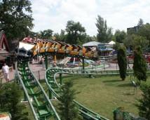 Roller06